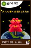 ひな祭り仕様にはならない大人の樹(グルメ日誌)