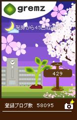 満開の桜がお出迎え